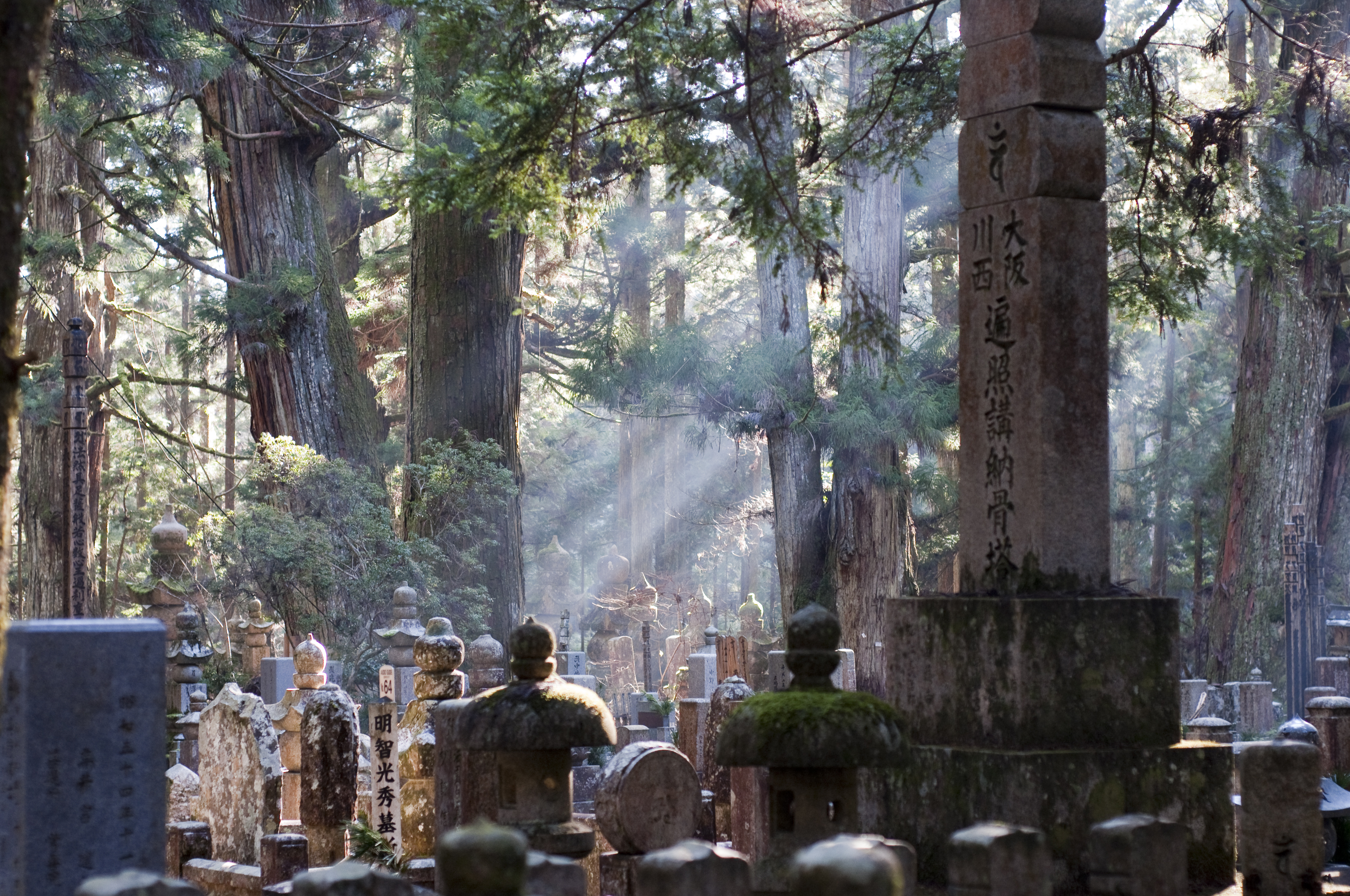 A Day at Mount Koya: The Sacred Cheapo Day Trip
