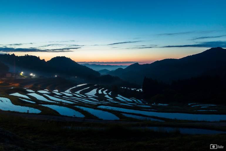 Chiba rice fields