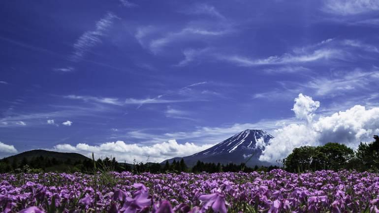 Yamanashi Fuji