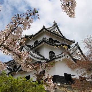 4 Easy Day Trips from Kyoto