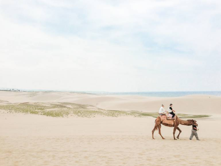 The sand dunes (and camels!) of Tottori are not a typical sight in Japan.