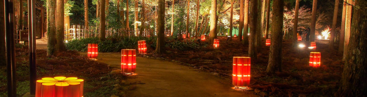 Top 5 Picks for Kyoto Winter Illuminations 2018-19