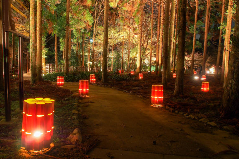 Kyoto winter illuminations hanatouro arashiyama