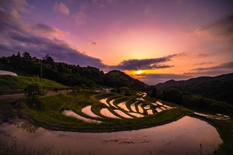 Chiba Rice Terrace, Kanto Region