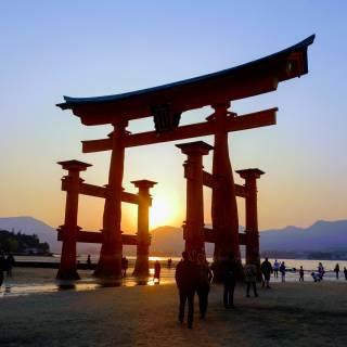 The Ultimate Miyajima Sightseeing Guide