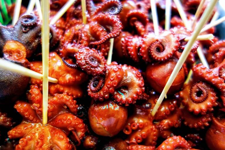 Nishiki Squid