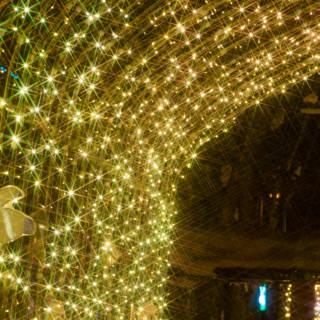 """""""Light of Versailles"""" Winter Illumination"""