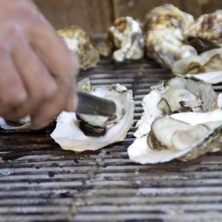 Kujuku Islands Oyster Eating Festival