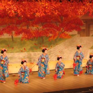 November 2019: Top Cheapo Events Around Japan