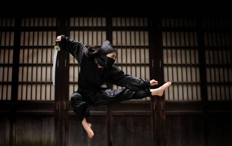 iga ninja town