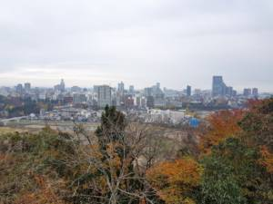 View from Sendai Castle