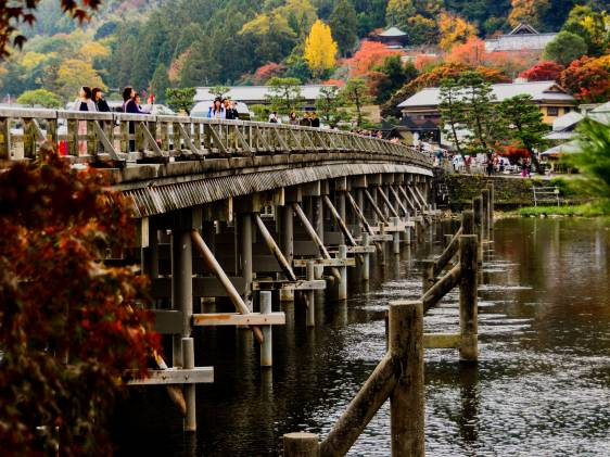 Wooden bridge in autumn near Kyoto's bamboo forest