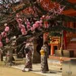Kitano Plum Blossom Baikasai Festival