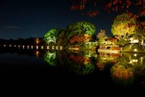 Daikaku-ji, Osawa-no-ike (Pond) -1 (November 2013)