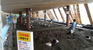 Ibusuki Beach Sand Bath
