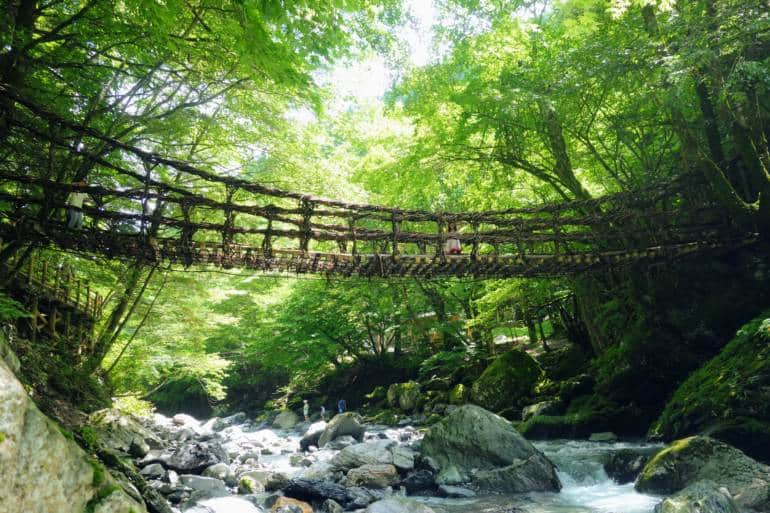 Iya Valley Vine Bridge japan bus tours