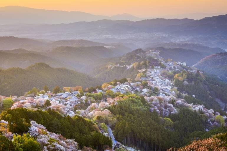 Mt. Yoshino japan national parks