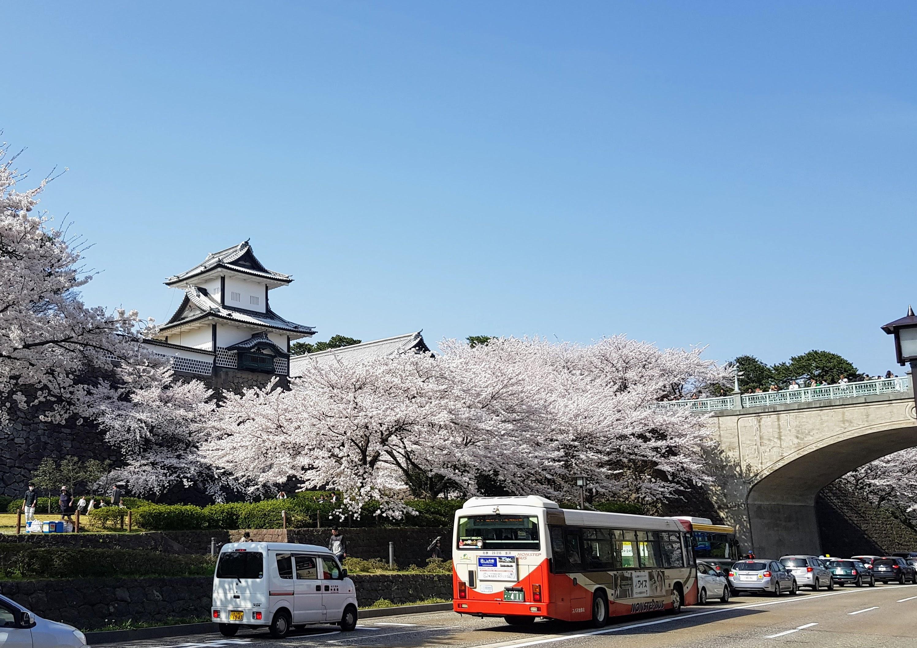Babes in Kanazawa