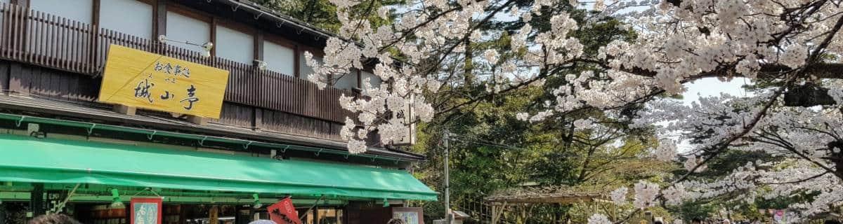 The Best Ways for Getting Around Kanazawa