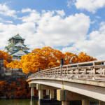 osaka castle autumn leaves