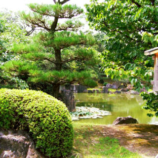 Nijo-jo Castle Garden Special Opening