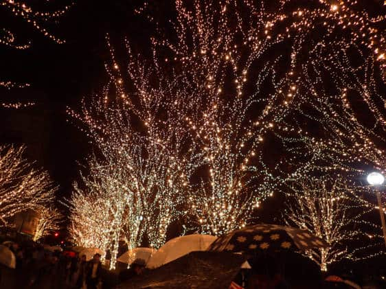 ROHM Illuminations Kyoto