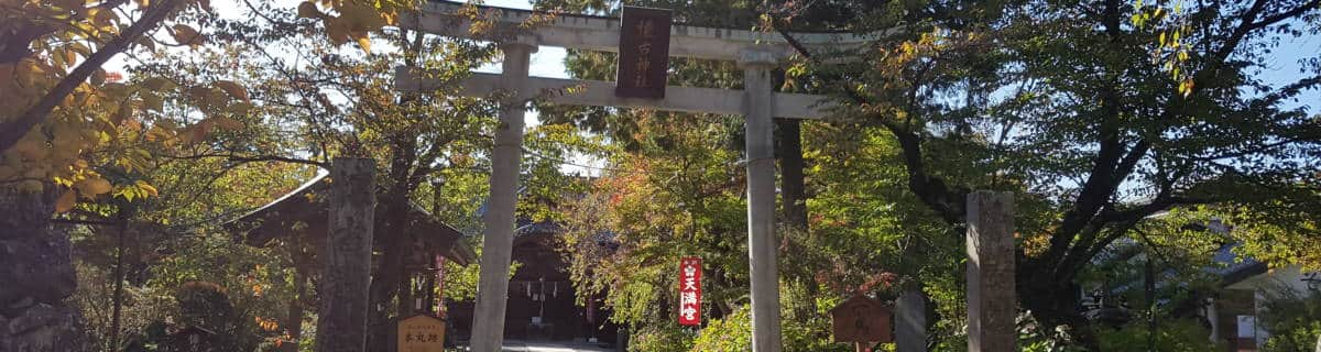 Visit Komoro for Soba, Onsen and Castle Remains away from the Crowds