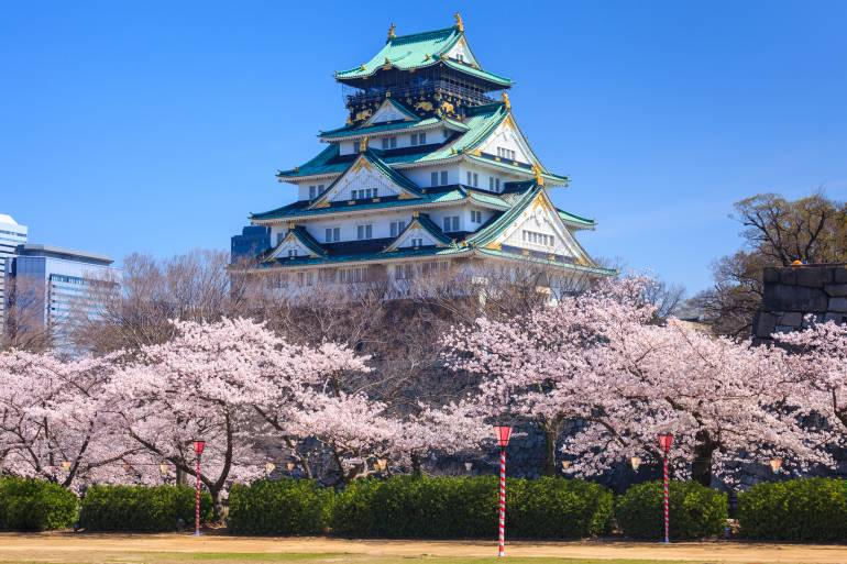 Osaka castle in cherry blossom season, Osaka, Japan