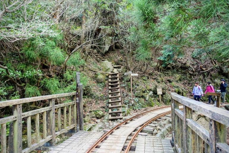 Yakushima - Jomon Sugi Hike - Okabu Trail start