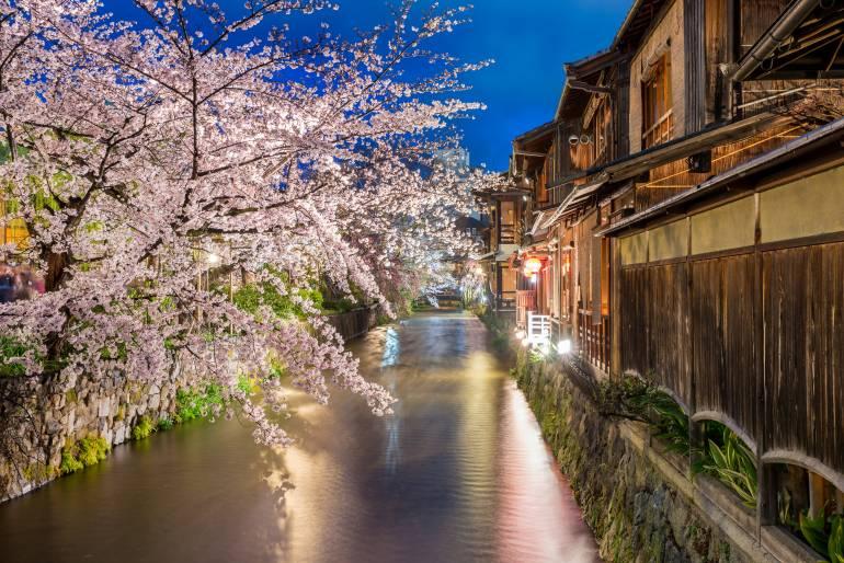 Gion in spring
