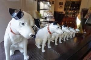 Kanazawa Phonograph Museum HMV Dogs