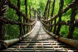 Oke-Iya Vine Bridge