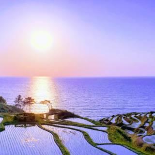 Shiroyone Senmaida Rice Terrace