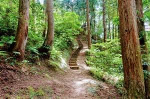 Yuwaku Inari Jinja Path