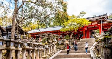 Kasuga Shrine Nara