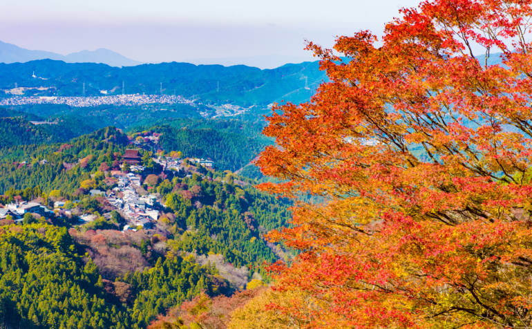 Mt. Yoshino autumn leaves in Nara