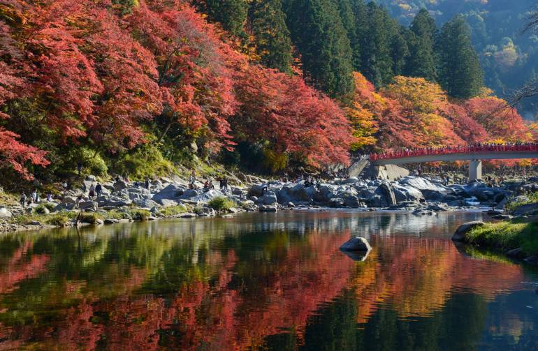 Autumn foliage above the water in Korankei, Aichi, Japan