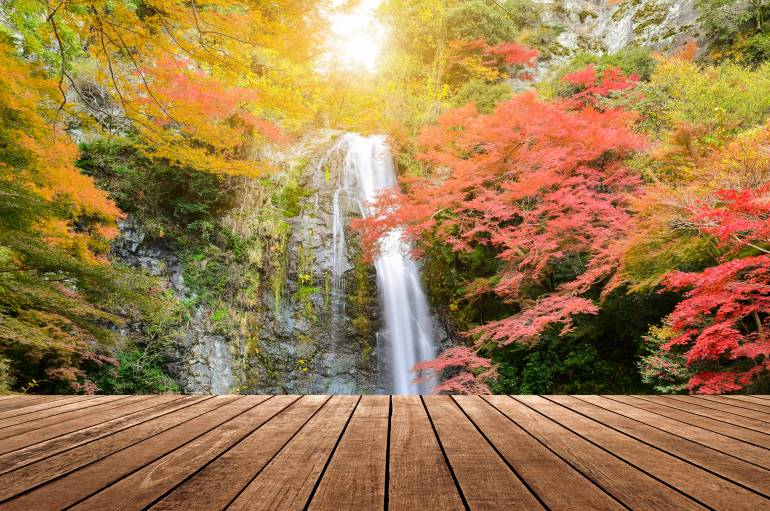 Mino waterfall in autumn season