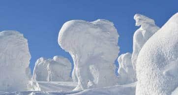 zao snow monster zao onsen yamagata japan