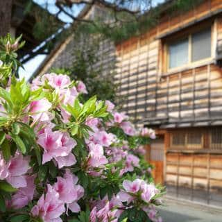 Kanazawa's Top Airbnb Options: Traditional Machiya and Riverside Stays