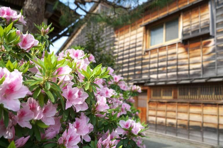 A quiet street in Kanazawa