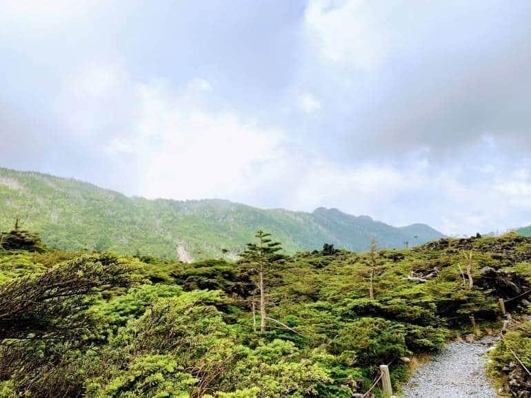 kita-yatsugadake-ropeway-summit-garden