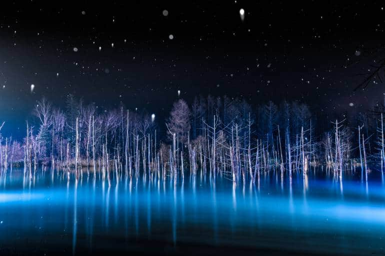 Hokkaido's famous blue pond illuminated at night in winter