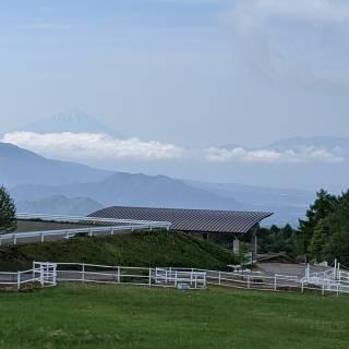 Makiba Park Highland Farm