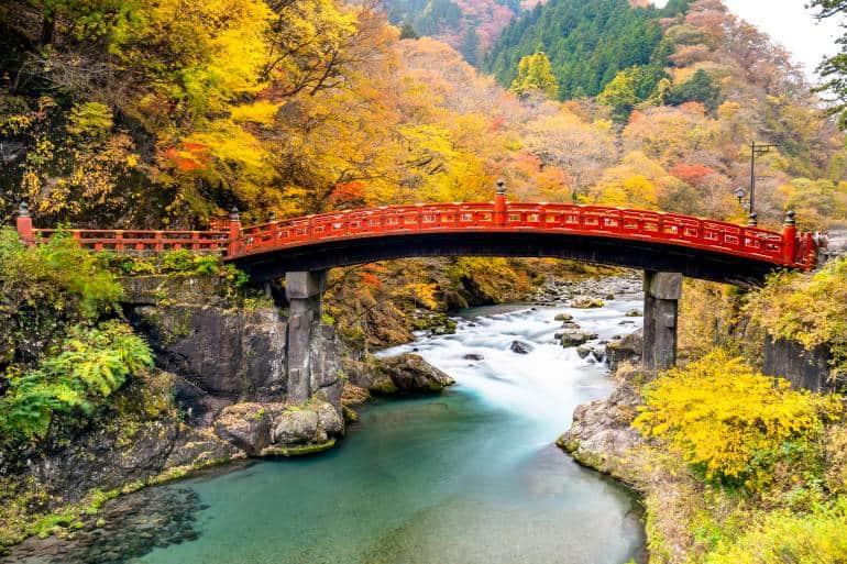 The famous red Shinkyo bridge surrounded by yellow autumn foliage