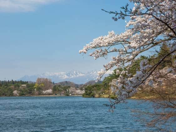Spring at Nanko Park, The oldest Japanese park