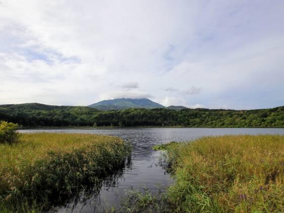 Rishiri Otatomari Swamp