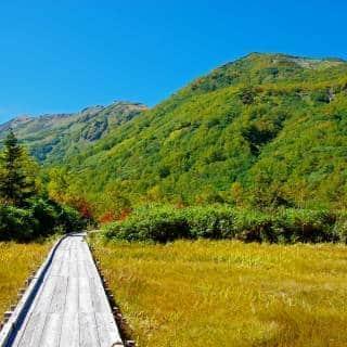 Tsugaike Natural Garden