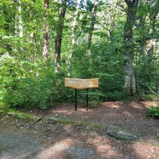 Nojiri Calm Forest Camping Ground