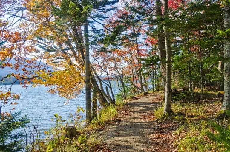 The nature trails at Lake Akan in the fall with view of water between trees